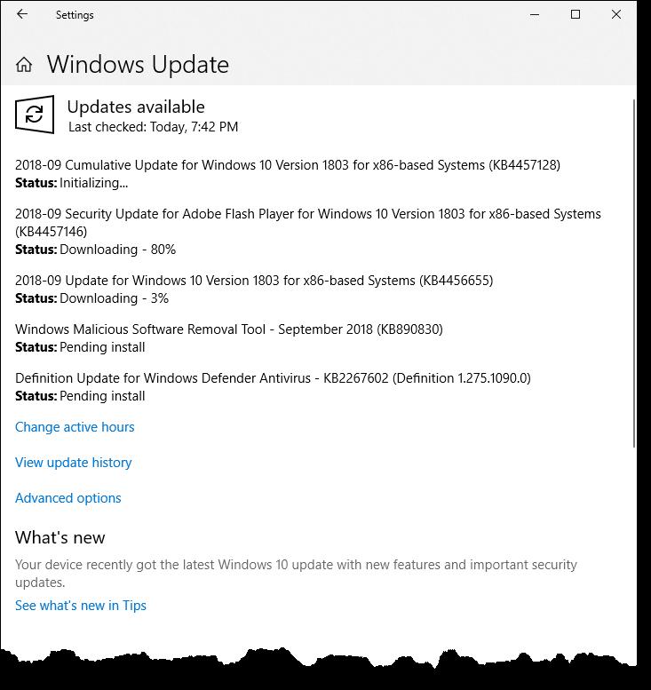 Understanding Windows Update (Tips Net)