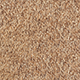 Carpet is a common floor covering