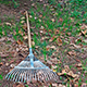 Outdoor living areas must be cleaned